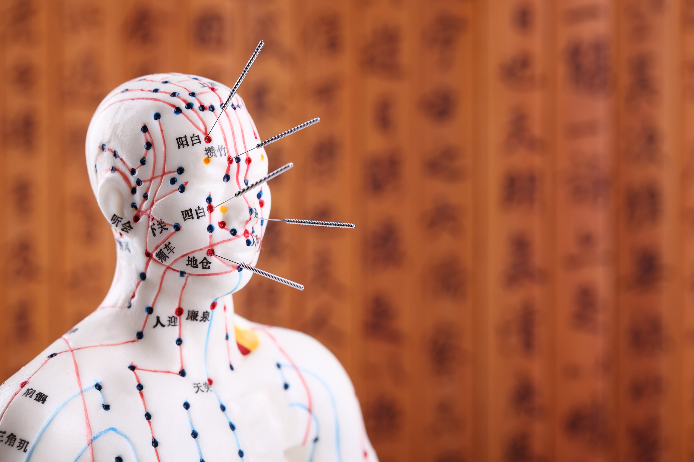 an overview of traditional acupuncture qigong and chinese medicine Traditional chinese medicine is a form of asian medicine which is based on a framework of more than two thousand years of chinese medical dubbed ear acupuncture, auricular acupuncture involves the insertion of tiny metal pellets in the patient's ear which remain in place for up to two weeks.